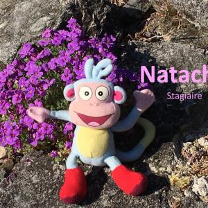 Natacha, Stagiaire
