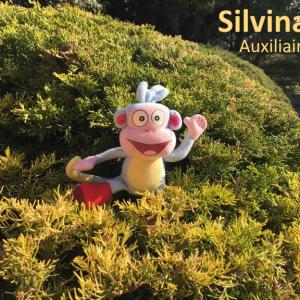 Silvina, Auxiliaire